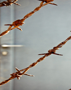 barb-wire_main