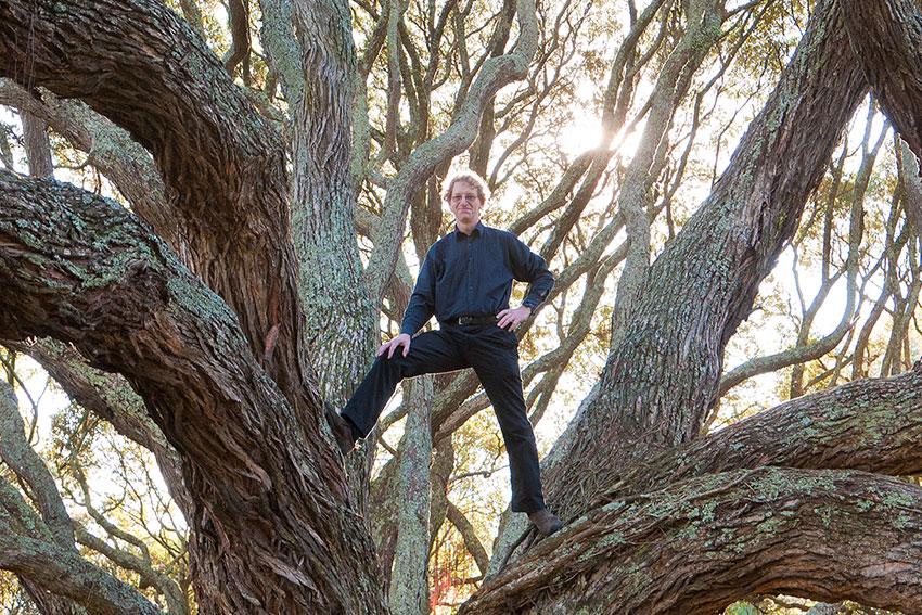 Len Gillman in a tree