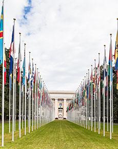UN-web-story2