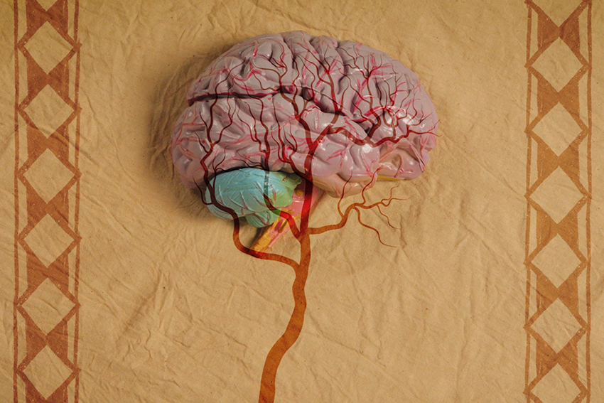 A screenshot from the videos showing a plastic brain.